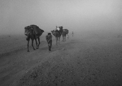 desertstorm